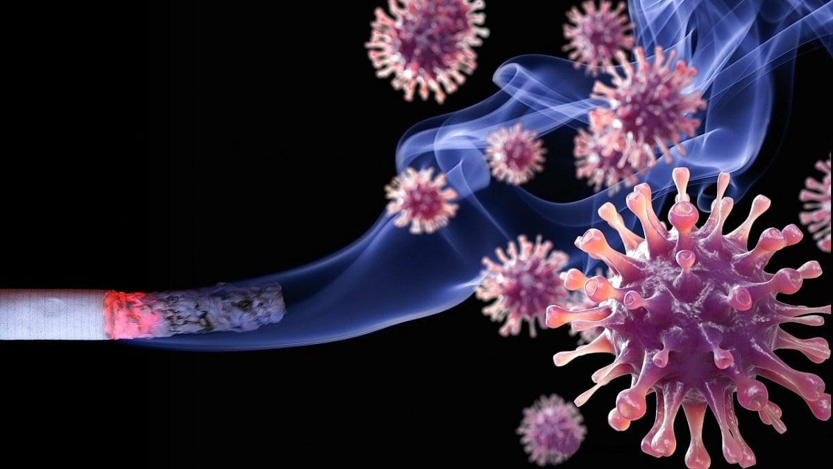 PCR Testi Kime Yapılır