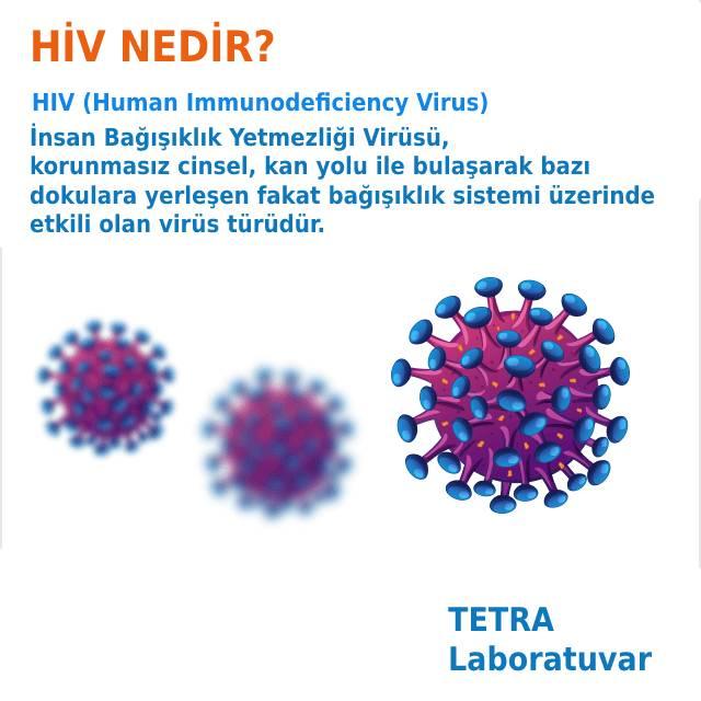 HIV Nedir
